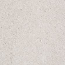 Shaw Floors Shaw Flooring Gallery Challenge Accepted I 12′ Creamy Tint 00101_5522G