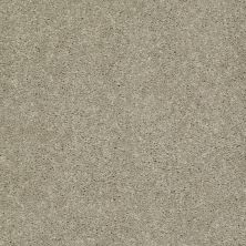 Shaw Floors Shaw Flooring Gallery Challenge Accepted I 12′ Honeycomb 00200_5522G
