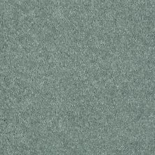 Shaw Floors Shaw Flooring Gallery Challenge Accepted I 12′ Spring Leaf 00300_5522G