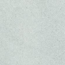 Shaw Floors Shaw Flooring Gallery Challenge Accepted I 12′ Sheer Silver 00500_5522G