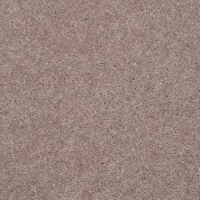 Shaw Floors Shaw Flooring Gallery Challenge Accepted I 12′ Pebble Creek 00701_5522G
