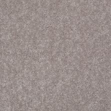 Shaw Floors Shaw Flooring Gallery Challenge Accepted I 12′ Mocha Frost 00702_5522G