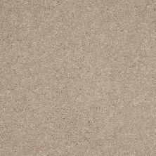 Shaw Floors Shaw Flooring Gallery Challenge Accepted II 12 Sandy Nook 00104_5523G