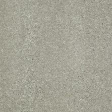 Shaw Floors Shaw Flooring Gallery Challenge Accepted II 12 Wild Rice 00105_5523G