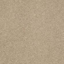 Shaw Floors Shaw Flooring Gallery Challenge Accepted II 12 Almond Bark 00106_5523G