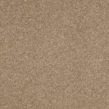 Shaw Floors Shaw Flooring Gallery Challenge Accepted II 12 Honeycomb 00200_5523G