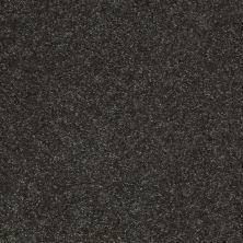 Shaw Floors Shaw Flooring Gallery Challenge Accepted II 12 Aspen 00302_5523G