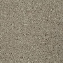 Shaw Floors Shaw Flooring Gallery Challenge Accepted II 12 Natural Beige 00700_5523G