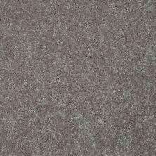 Shaw Floors Shaw Flooring Gallery Challenge Accepted II 12 Mocha Frost 00702_5523G