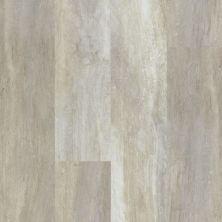 Philadelphia Commercial Vinyl Residential Transcend Repose Gray 00117_5529V