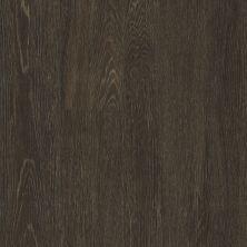 Philadelphia Commercial Vinyl Residential Sustain 20 Mil Barley 00740_5535V