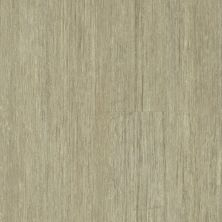 Philadelphia Commercial Vinyl Residential In The Grain II 30 Hemp 00216_5536V