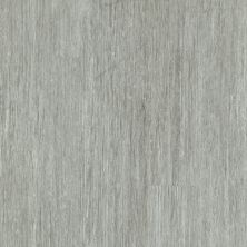 Philadelphia Commercial Vinyl Residential In The Grain II 30 Frosted Oats 00559_5536V