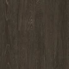Philadelphia Commercial Vinyl Residential In The Grain II 30 Barley 00740_5536V