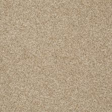 Shaw Floors Shaw Flooring Gallery You Found Me Taffeta 00107_5558G