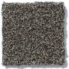 Shaw Floors Shaw Flooring Gallery You Found Me Grey Flannel 00501_5558G
