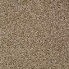 Shaw Floors Shaw Flooring Gallery Inspired By I Saffron 00757_5559G