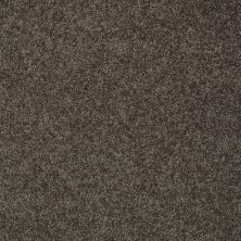 Shaw Floors Inspired By III Chocolate 00758_5562G
