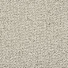 Shaw Floors Shaw Flooring Gallery Subtle Shimmer Loop Cityscape 00109_5568G