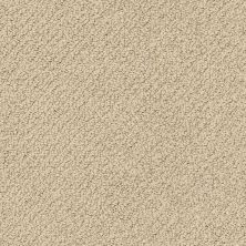 Shaw Floors Shaw Flooring Gallery Subtle Shimmer Loop Latté 00152_5568G