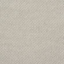 Shaw Floors Shaw Flooring Gallery Subtle Shimmer Loop Glaze 00154_5568G