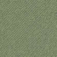 Shaw Floors Shaw Flooring Gallery Subtle Shimmer Loop Bay Laurel 00351_5568G