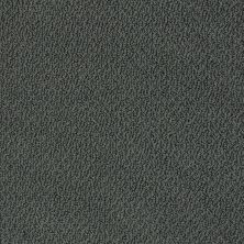 Shaw Floors Shaw Flooring Gallery Subtle Shimmer Loop Peaceful Garden 00352_5568G