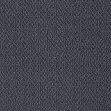 Shaw Floors Shaw Flooring Gallery Subtle Shimmer Loop Indigo 00451_5568G