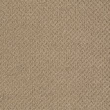 Shaw Floors Shaw Flooring Gallery Subtle Shimmer Loop Twig 00702_5568G