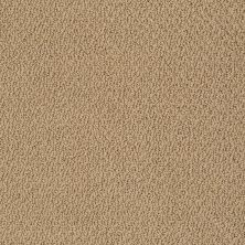 Shaw Floors Shaw Flooring Gallery Subtle Shimmer Loop Honey Pot 00722_5568G