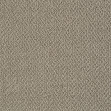 Shaw Floors Shaw Flooring Gallery Subtle Shimmer Loop Flax 00751_5568G