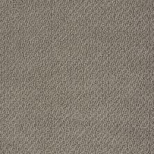 Shaw Floors Shaw Flooring Gallery Subtle Shimmer Loop Rustic Elegance 00752_5568G