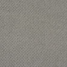 Shaw Floors Shaw Flooring Gallery Subtle Shimmer Loop Fog 00753_5568G