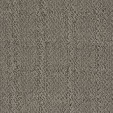 Shaw Floors Shaw Flooring Gallery Subtle Shimmer Loop Graphite 00754_5568G