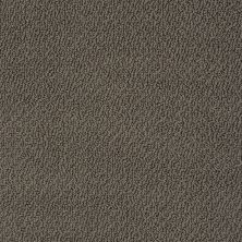 Shaw Floors Shaw Flooring Gallery Subtle Shimmer Loop Chocolate 00758_5568G