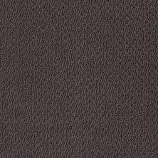 Shaw Floors Shaw Flooring Gallery Subtle Shimmer Loop Urban Loft 00951_5568G