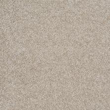 Shaw Floors Shaw Flooring Gallery Premier Role Abalone 00153_5571G