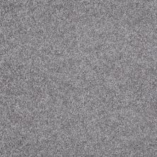 Shaw Floors Shaw Flooring Gallery Premier Role Sterling 00500_5571G