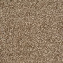 Shaw Floors Shaw Flooring Gallery Premier Role Bungalow 00701_5571G