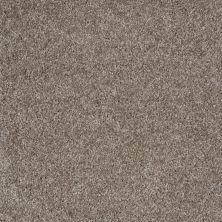 Shaw Floors Shaw Flooring Gallery Premier Role Driftwood 00750_5571G