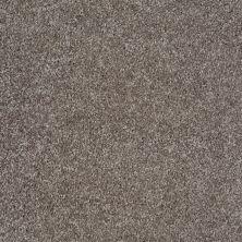 Shaw Floors Shaw Flooring Gallery Premier Role Stone 00751_5571G