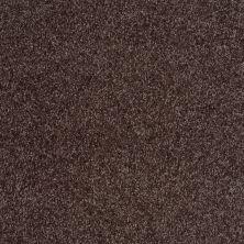 Shaw Floors Shaw Flooring Gallery Premier Role Mink 00753_5571G