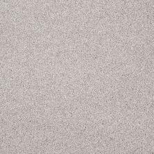 Shaw Floors Shaw Flooring Gallery Beautifully Simple Catnip 00114_5573G