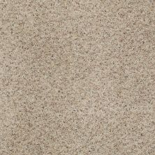 Shaw Floors Shaw Flooring Gallery Beautifully Simple Knapsack 00154_5573G