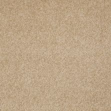 Shaw Floors Shaw Flooring Gallery Beautifully Simple Oakwood 00200_5573G