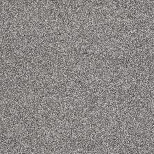 Shaw Floors Shaw Flooring Gallery Beautifully Simple Battleship 00513_5573G