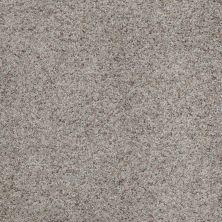 Shaw Floors Shaw Flooring Gallery Beautifully Simple Birch Bark 00550_5573G