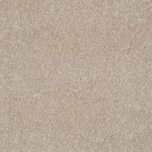 Shaw Floors Shaw Flooring Gallery Lucky You French Canvas 00102_5574G
