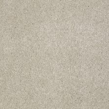 Shaw Floors Shaw Flooring Gallery Lucky You Linen 00104_5574G