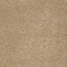 Shaw Floors Shaw Flooring Gallery Lucky You Oakwood 00200_5574G
